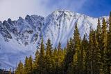 Fletcher Mountain Winter