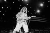 Eddie Van Halen print