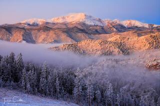 Frosty Forest Below Pikes Peak
