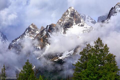Northern Rockies (WY/ID/MT)