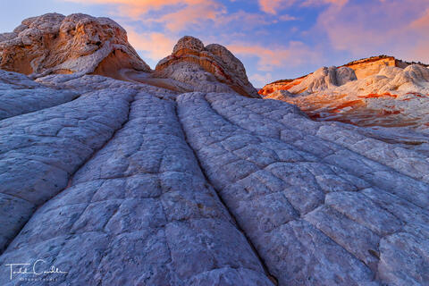 Desert Southwest (AZ/NM/TX)
