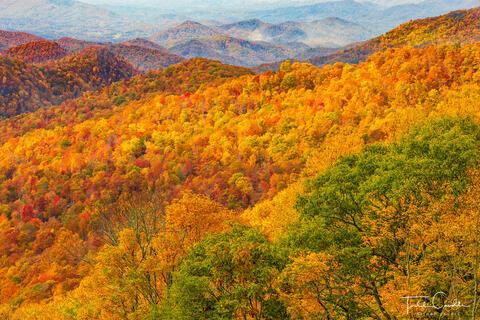 Appalachia (NC/TN)