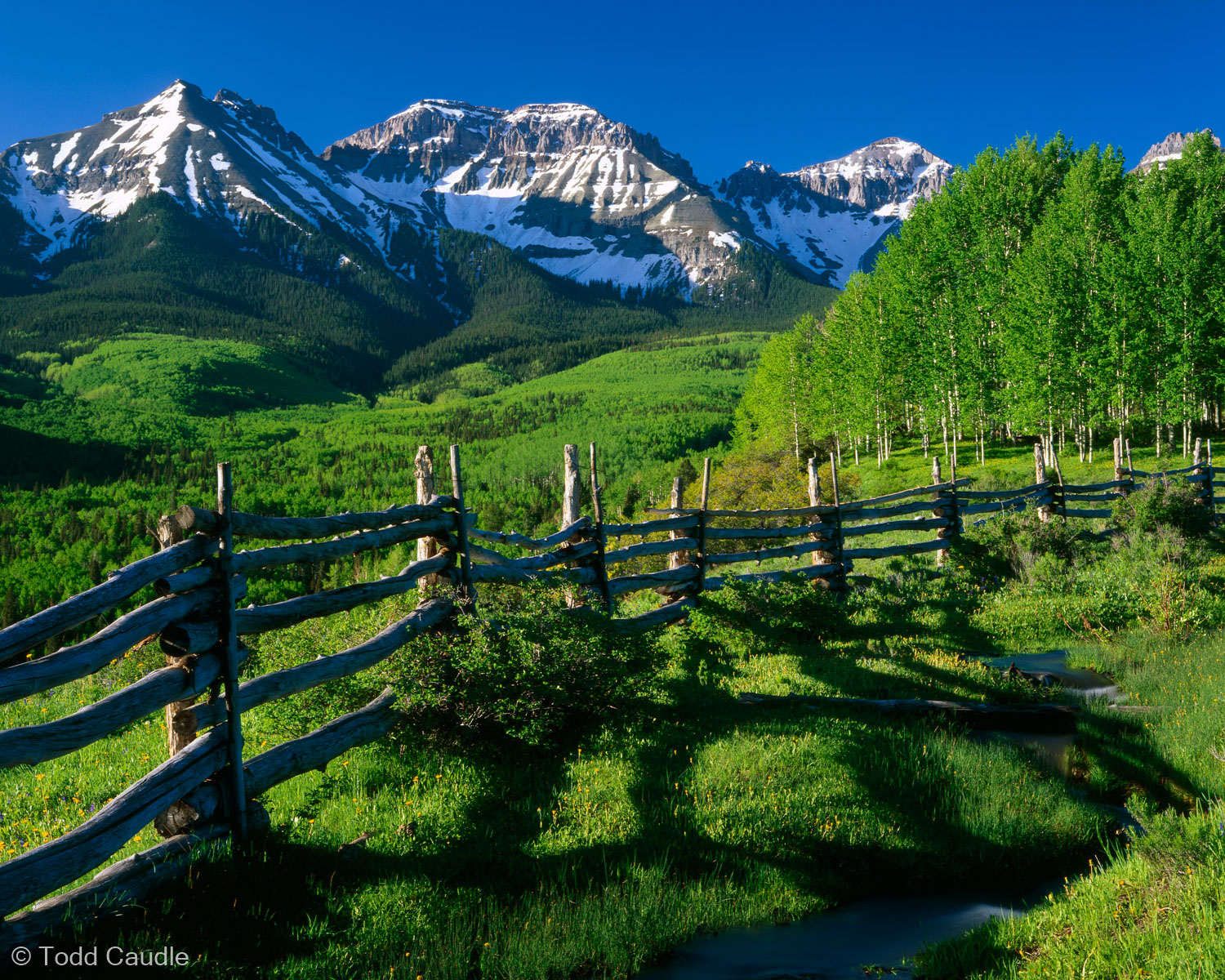 A split-rail fence and freshly leafed aspen trees precede this view of the Sneffels Range in southwest Colorado. Unfortunately...