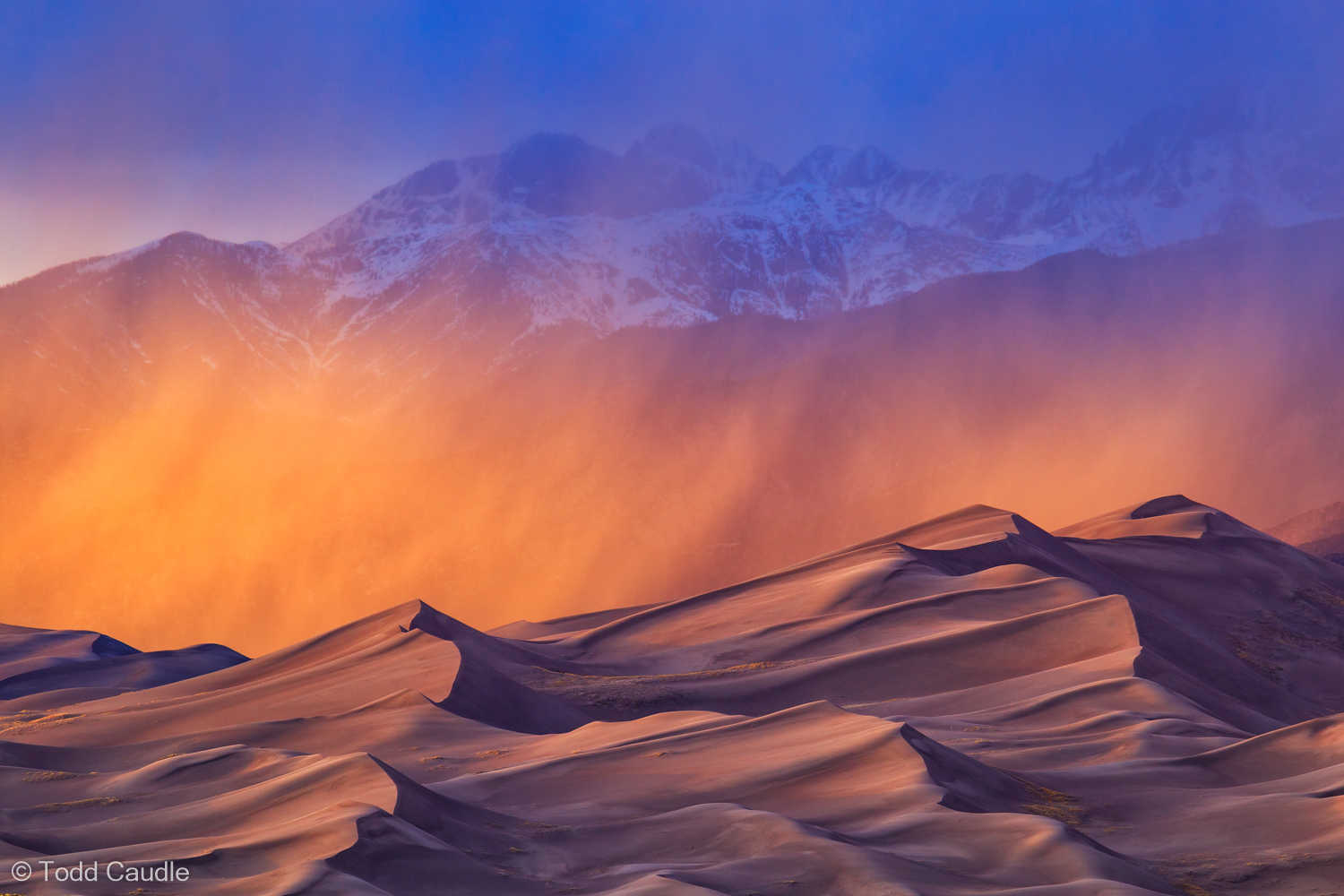 Sheets of rain fall right at sunset over the vast dune fields of Great Sand Dunes National Park, creating dramatic backlighting...