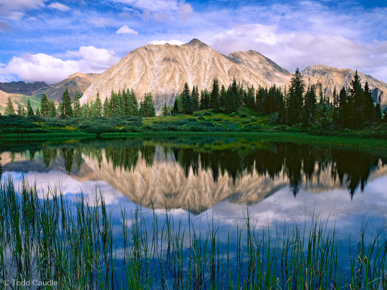 White Rock Mountain reflects in a hidden tarn on a beautiful summer evening in the Maroon Bells-Snowmass Wilderness.
