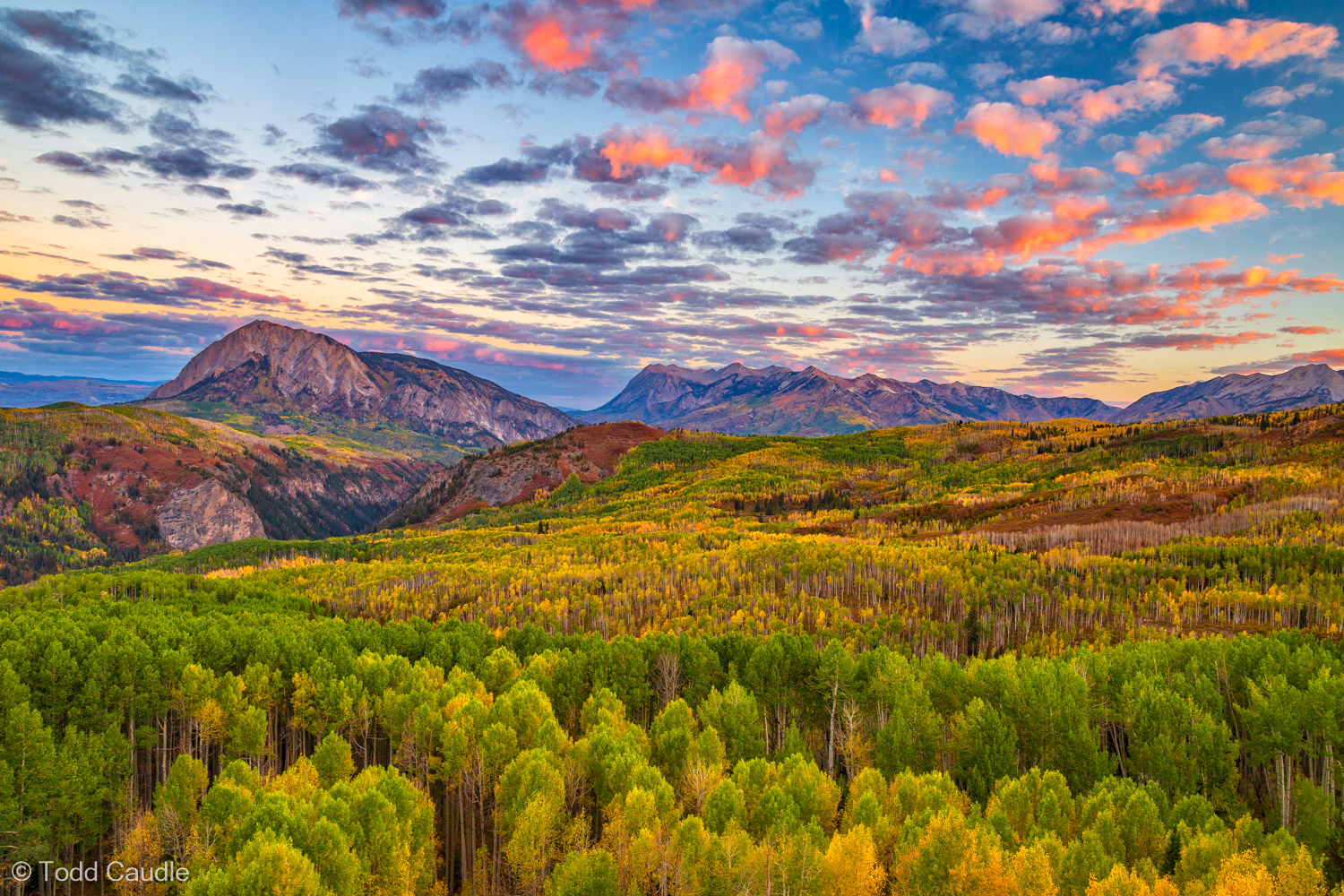 The aspens are just beginning to put on their annual autumn show in this sunrise view toward Dark Canyon and Marcellina Mountain...