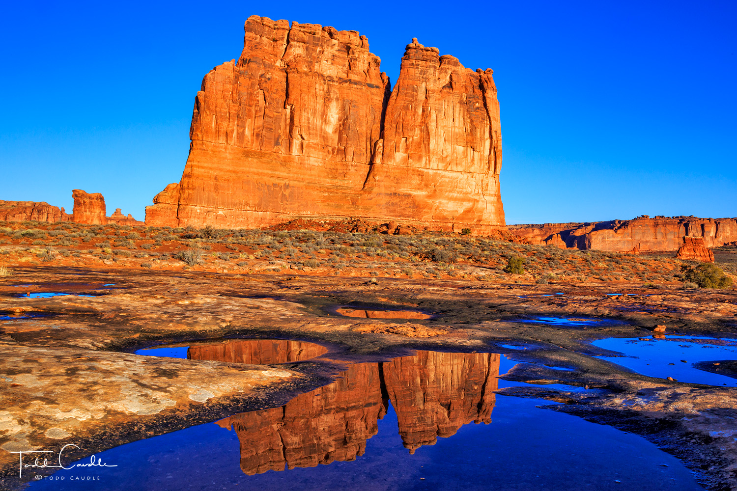 Potholes in an expanse of sandstone fill with water after overnight rains, creating fleeting reflecting pools.