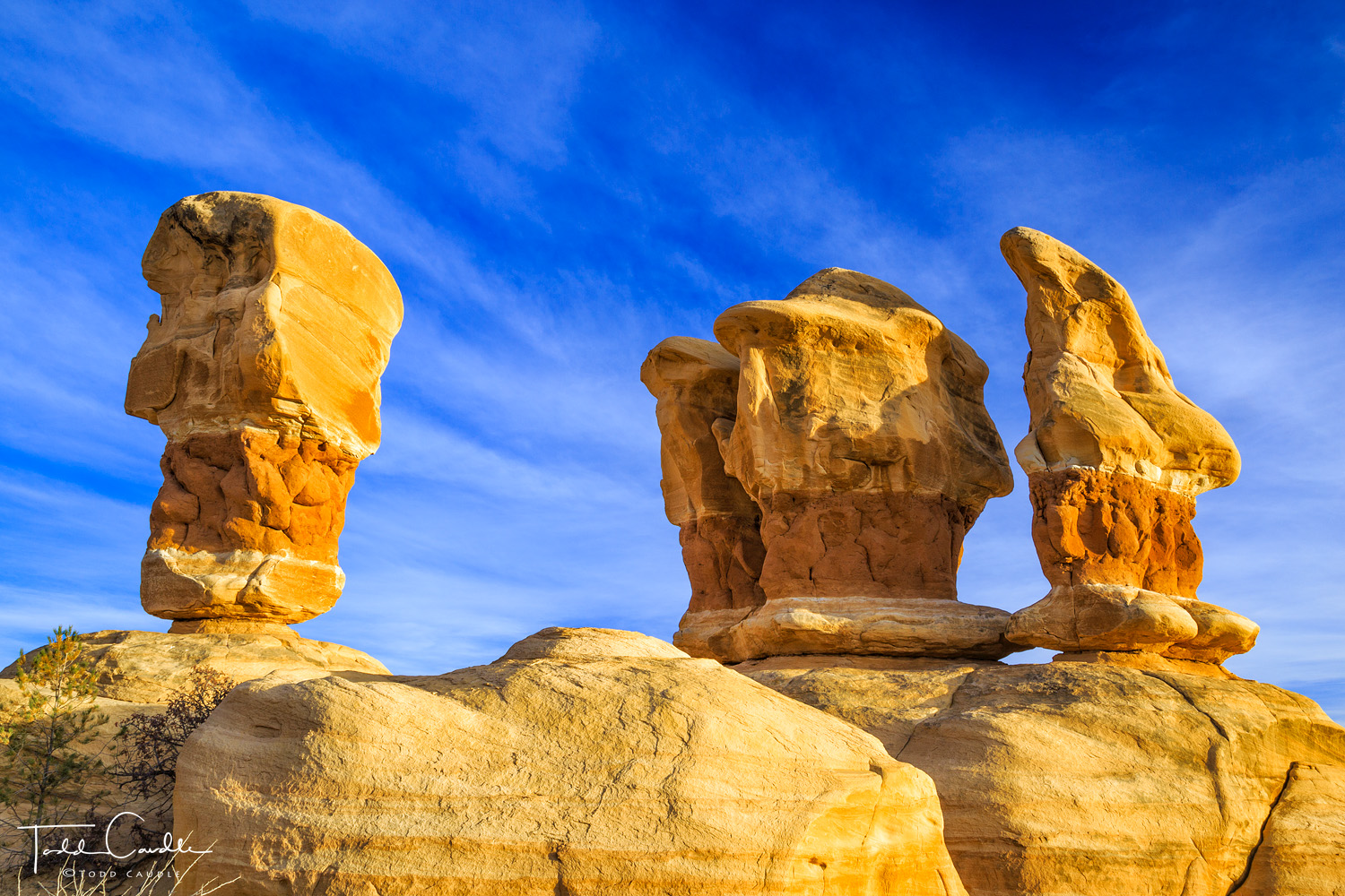 Enormous free-standing monoliths at Devil's Garden defy the ravages of erosion to remain upright — for now.