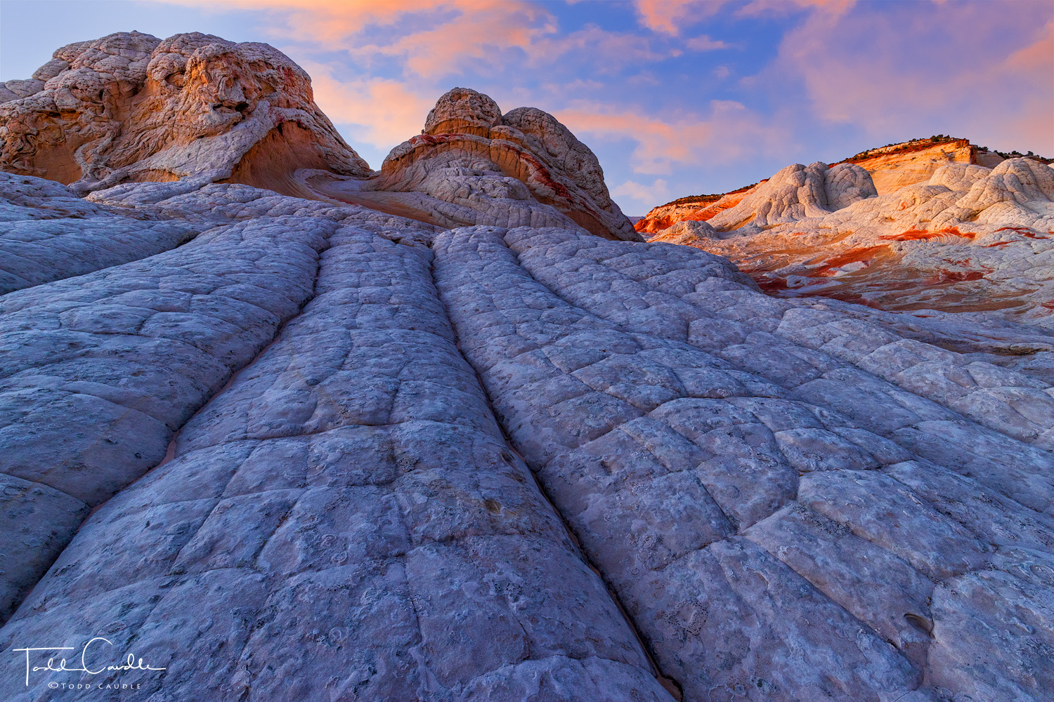Northern Arizona boasts several locations of geologic beauty, and White Pocket is one of its most fascinating. Accessed by a...