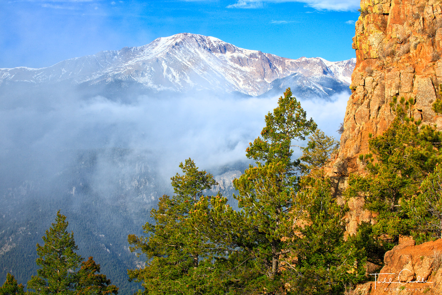 Pikes Peak (14,115') rises above the clouds, Pike National Forest.