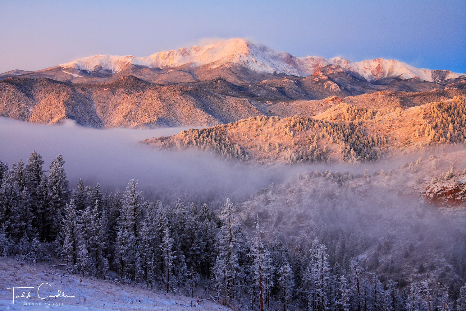 Alpenglow light illuminates Pikes Peak above a forest of frost and fog.