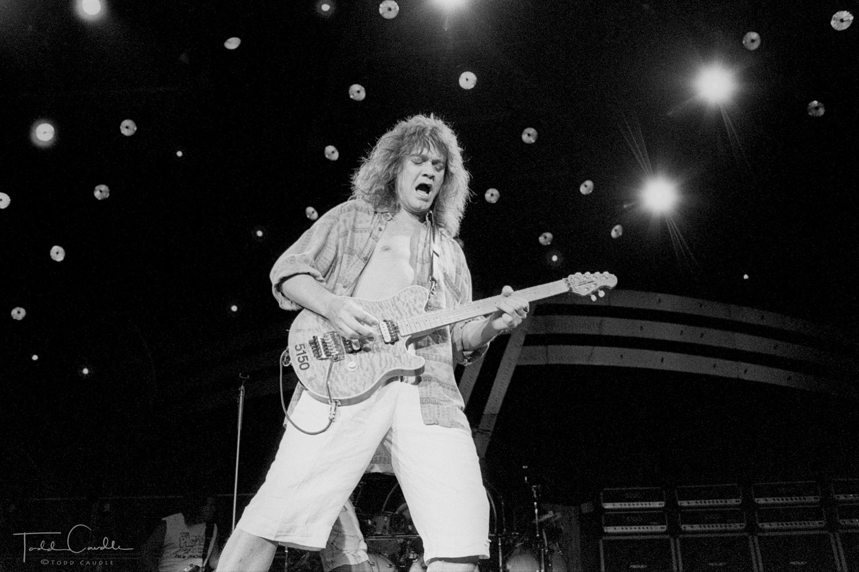 Van Halen, Eddie Van Halen, Alex Van Halen, Michael Anthony, Sammy Hagar, Fiddlers Green, Fiddler's Green, 1993