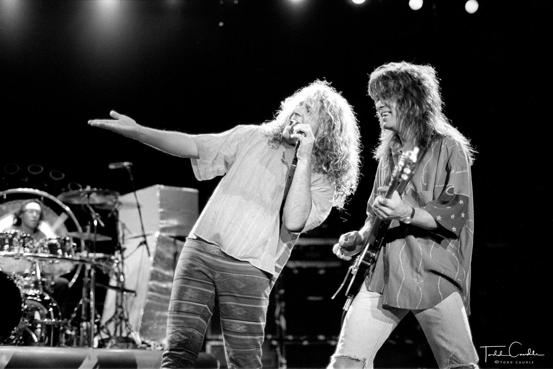 Van Halen, Eddie Van Halen, Alex Van Halen, Michael Anthony, Sammy Hagar, Fiddlers Green, Fiddler's Green, 1991